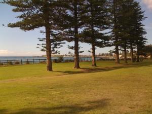 View from Stuart park
